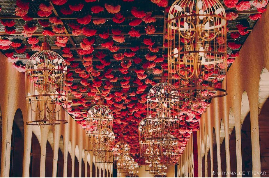 Rose & Lighted Cages Ceiling Decor