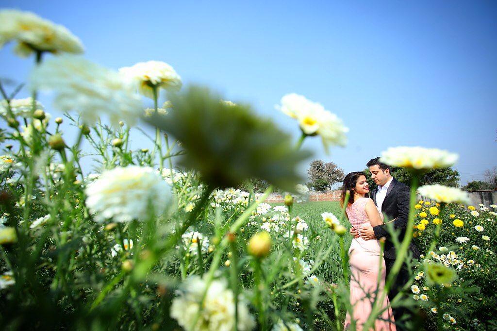 Pre Wedding Shoot in Gardens
